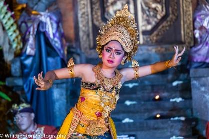Bali Dancer 1