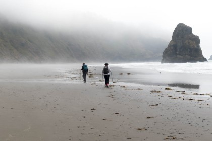 A Foggy Day on the Oregon Coast Trail